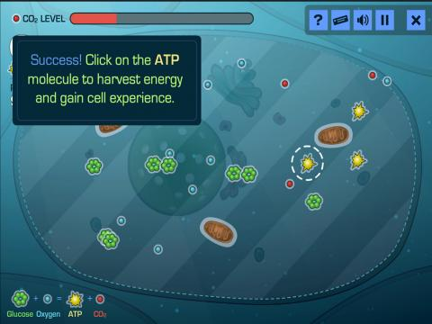 Educational Game - Cell Command