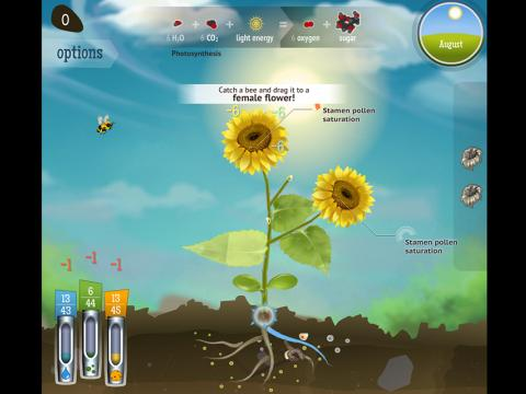 Reach for the Sun - Educational Game