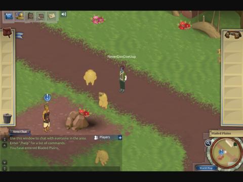 Radix Project Screenshot 2